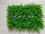 نوعية [بوإكسووود] حصيرة اللون الأخضر جدار