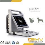 BCU-20 Small Animal Diagnostic Ultrasound