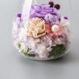 La costellazione ha conservato il fiore con indicatore luminoso per la decorazione