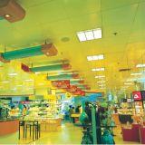 Uitstekende kwaliteit van ISO schortte het Valse Plafond van het Aluminium met Geperforeerde Stijl op