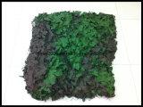 Rot Rustle resistentes do Molde Livre Desert Woodland Grey Camo Net