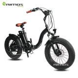 شاطئ أسلوب ثلج درّاجة كهربائيّة مع [750و] [بفنغ] محرّك