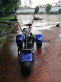 motorino di 1000W Citycoco Harley con le doppie sedi