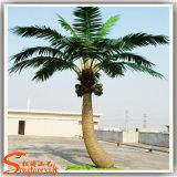 Im Freienfiberglas-künstlicher gefälschter Kokosnuss-Pflanzenbaum