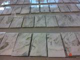 벽 마루를 위한 자연적인 돌 건축재료 Polished 대리석 지면 도와