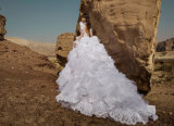 販売のBallgownのウェディングドレスのBirdalの熱いガウン(BH011)