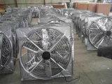 Il pollame alloggia il ventilatore del cono per la fabbrica del workshop o dell'azienda agricola