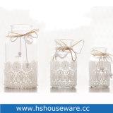 De Fles die van de Bloem van het kant van Bloem Hydroponic Vaas van het Glas van de Bloem schikt