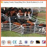 Panneau galvanisé plongé chaud de bétail