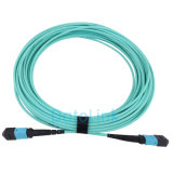 A MPO-MPO OM3 12para núcleos de cabo de patch