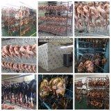 Мясо в коммерческих целях /рыб / говядина толчками сушки-машины