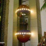 Elevador Sightseeing da abertura central com o produto de Certificatefeatured do Ce