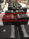 2016 neue V25 Zeile Reihen-System, Heiß-Verkauf Konzert-Zeile Reihe (2500W)