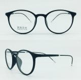 Eyewear 플라스틱 강철 광학적인 프레임