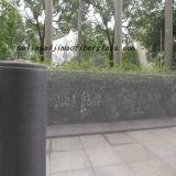 pantalla negra de la mosca de la fibra de vidrio 120g para la ventana