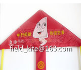 En71 Certisfication를 가진 높은 Quality Beautiful Delta Kite