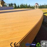 Decking напольного Decking/сада деревянного составного деревянный пластичный