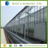 Edificio rápido del invernadero de la estructura del metal de la historia del palmo grande de la construcción solo