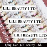 El diamante del enrollamiento del cristal C de la belleza de Lili pre hizo los ventiladores la extensión del latigazo del ojo de la piel del pelo del visión escritura de la etiqueta privada