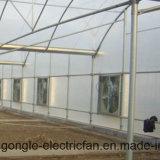 Weifang riemengetriebener Abgas-Entlüfter-Ventilator mit galvanisierten Blendenverschlüssen