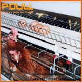 Гальванизированная клетка слоя батареи машинного оборудования фермы цыпленка Breeding с автоматический подавать