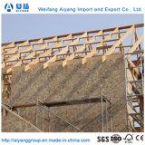 Bsf de haute qualité (Oriented stand conseils) pour la construction