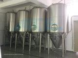 3bbl birra isolata rivestimento Unitank (ACE-FJG-0120)