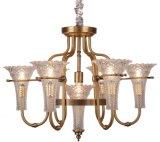 Iluminação do candelabro do ferro, corpo do metal, tela de vidro, 6 luzes (SL2238-6+1)