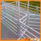 Горячий DIP оцинкованных овец во дворе ворота
