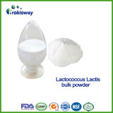 補足のためのMicro-Encapsulated Probiotics LactococcusのLactisの粉