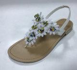 Vendre de l'été Fashion sandales à chaud