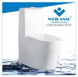 Керамические Weidansi промойте вниз S-Trap одну деталь туалета (WDS-T6107)