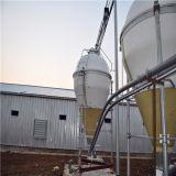 Быстрое строительство Сборные стальные конструкции фермы птицы