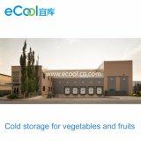 Fábrica de mantimento fresca personalizada de armazenamento frio e de processamento do grande tamanho para vegetais e frutas