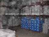 Grande quarto frio para a fábrica da trasformação dos vegetais e dos frutos