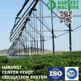 Разбивочная оросительная система оси для полива пшеницы