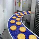 1873D de qualité alimentaire en plastique à usage intensif à dessus plat Faites glisser la chaîne du convoyeur