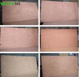 Beständiges WBP 4mm Werbungs-Furnierholz des Wandverkleidungs-Wasser-für Decke