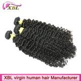 Hochwertige Jungfrau-kambodschanische lockiges Haar-Webart