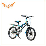 12人のインチの方法子供のバイクの自転車の普及したデザインLyc-0023