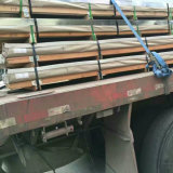 Piatto laminato a caldo dell'acciaio inossidabile (304/304L/304H)
