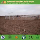6 il bestiame resistente delle rotaie 2.1*1.8m recinta i comitati dell'iarda del bestiame della rete fissa del bestiame della rete fissa dell'azienda agricola