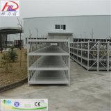 Mostrar el tramo largo Bastidor de acero estantes de almacenamiento para almacén