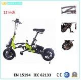 12 pouces pliant le vélo/bicyclette/lumière d'Ebike et maniable électriques
