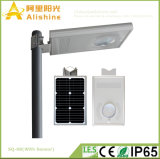 1개의 LED 옥외 정원 램프 태양 에너지 통로 빛에서 8W 전부