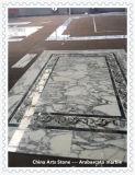 Het Witte Marmer van Italië Bianco Arabascato voor de Bouw van Vloer