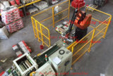 machine de conditionnement automatique du robot 210kg intelligent Palletizer robotique