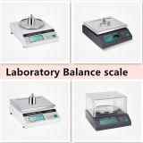 Visualizzazione dell'affissione a cristalli liquidi della scala dell'equilibrio elettronico DTY1000 utilizzata in laboratorio