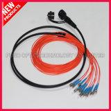 Lc-Antennen-Zufuhr-Kabel FullAXS kompatibel