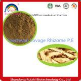 Rizoma P.E del sedano di montagna di Szechwan certificata iso di fabbricazione di GMP